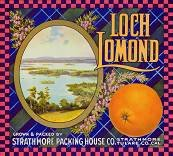 Loch Lomond Orange Citrus Crate Label