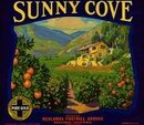 VINTAGE 1931 SUNNY COVE REDLANDS CA ORANGE CITRUS CRATE LABEL