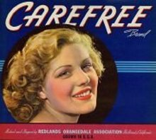 Carefree Orange Citrus Pinup Crate Label