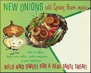 Vintage ONIONS SPRING GROCERY Store Sign vegetable onio