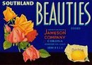 Southland Beauties Sunkist Citrus Crate Label
