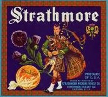 Strathmore Sunkist Orange Citrus Crate Label