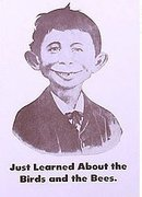 VINTAGE ALFRED E. NEWMAN MAD MAGAZINE SIGN