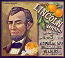 Lincoln Sunkist Citrus Crate Label
