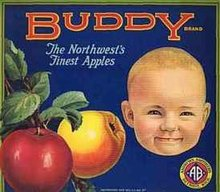 VINTAGE BUDDY APPLE CRATE BABY LABEL
