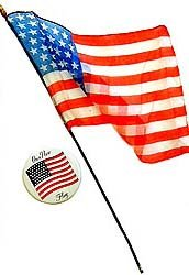 VINTAGE 1959 ALASKA FLAG / PINBACK TOYS TOY