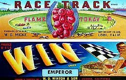 4 VINTAGE AUTO CAR GRAPE CRATE LABELS