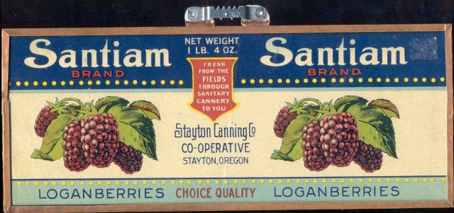 Vintage FRAMED SANTIAM GRAPE Loganberries Can