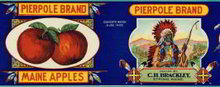Pierpole Apple Label - Maine Litho