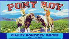 Pony Boy Honeydew Label