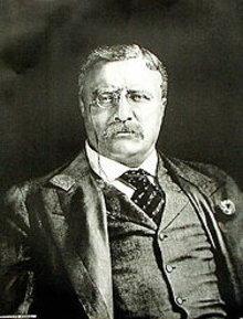 Theodore Roosevelt Art Print - Portrait