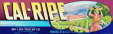 Cal-Ripe Grape Crate Label