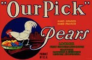 Our Pick Pears Fruit Crate Label
