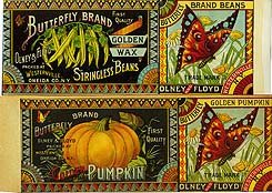 Olney & Floyd Butterfly Brand Labels 1890s