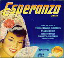 Esperanza Sunkist Orange Citrus Crate Label