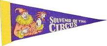 Souvenir Circus Felt Pennant 1930s