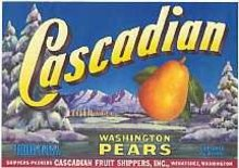 Cascadian Pear Labels 1940s