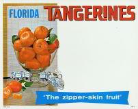 Florida Tangerine Sign - 1950s