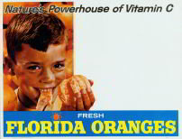 Vintage Florida Oranges Sign 1950s