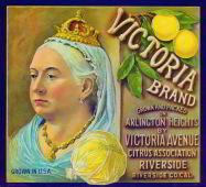 Victoria Brand Grapefruit Citrus Crate Label