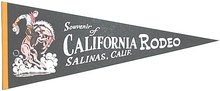 Rodeo Felt Pennants California 1970s