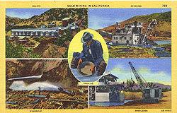 Gold Miner Postcard 1930s