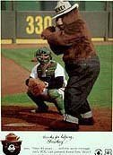 Smokey the Bear Baseball Card 1984