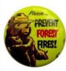 Smokey the Bear Pinback Pin Badge 1960