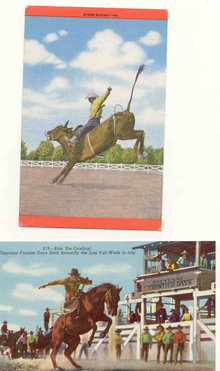 Rodeo Postcards