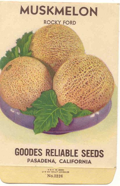 Pasadena Muskmelon Fruit Seed Pack