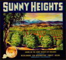Sunny Heights Citrus Crate Label