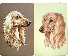 Saluki Playing Cards