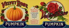Velvet Rose Pumpkin Label