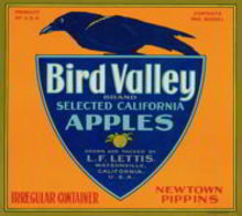 Bird Valley Crate Label