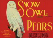 Red Snow Owls Pear Label