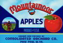 Mountaineer Apple Crate Label