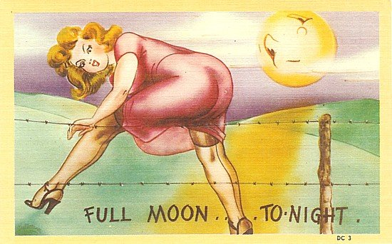 Full Moon Pinup Comical Postcards