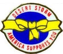 Desert Storm Lapel Pin