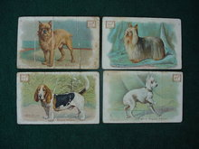 Early, Dwight Soda Dog Trade Cards