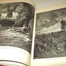 John Milton's 'PARADISE LOST' Gustav Dore Illustrations NF  Large Edition