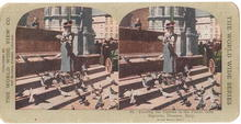Stereoview Card -  Feed Pigeons Piazza delta Signor, Florence, Italy