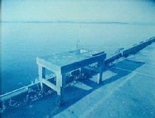 Fish Table, Morro Bay Modern cyanotype