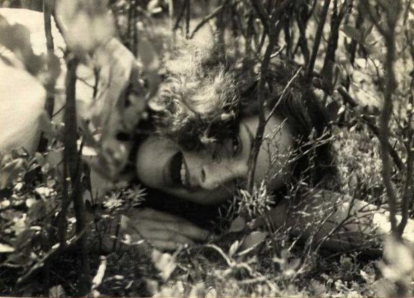 Jose Alemany: La Belle au Bois