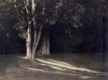 Knight Studio: Sunlit Lawn