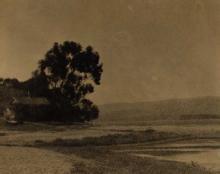 Sigismund Blumann: Marsh Misty