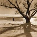 Mitchel Obremski: Along Onondaga Lake - Winter