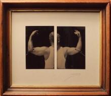 David Sokosh: Arms - Diptych, Brooklyn