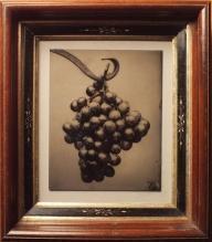 David Sokosh: Grapes on a Hook - tintype