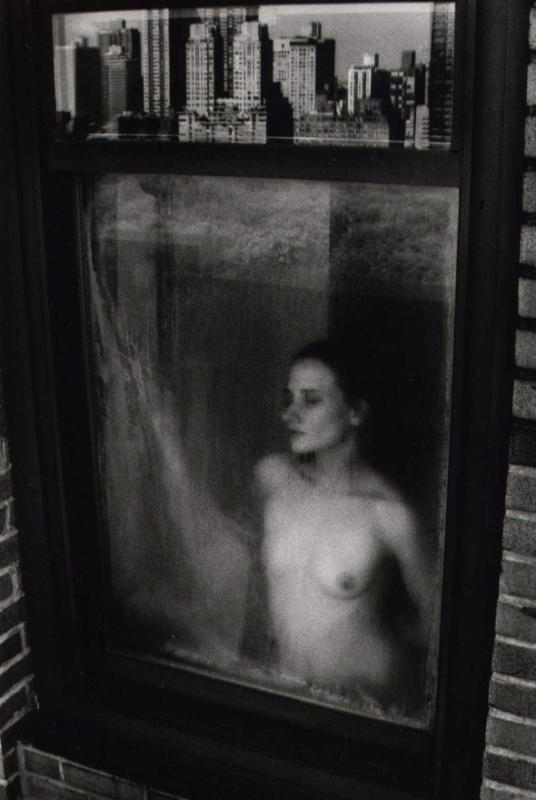 Steven Gelberg: New York Nude
