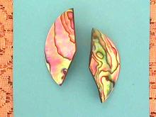 Abalone/Paua Shell Earrings,Unusual,Prcd